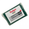 Today's Essentials Scouring Pads